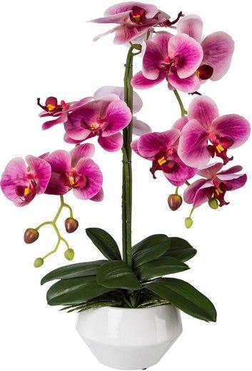Kunstpflanze Orchidee, Creativ green, Höhe 52 cm