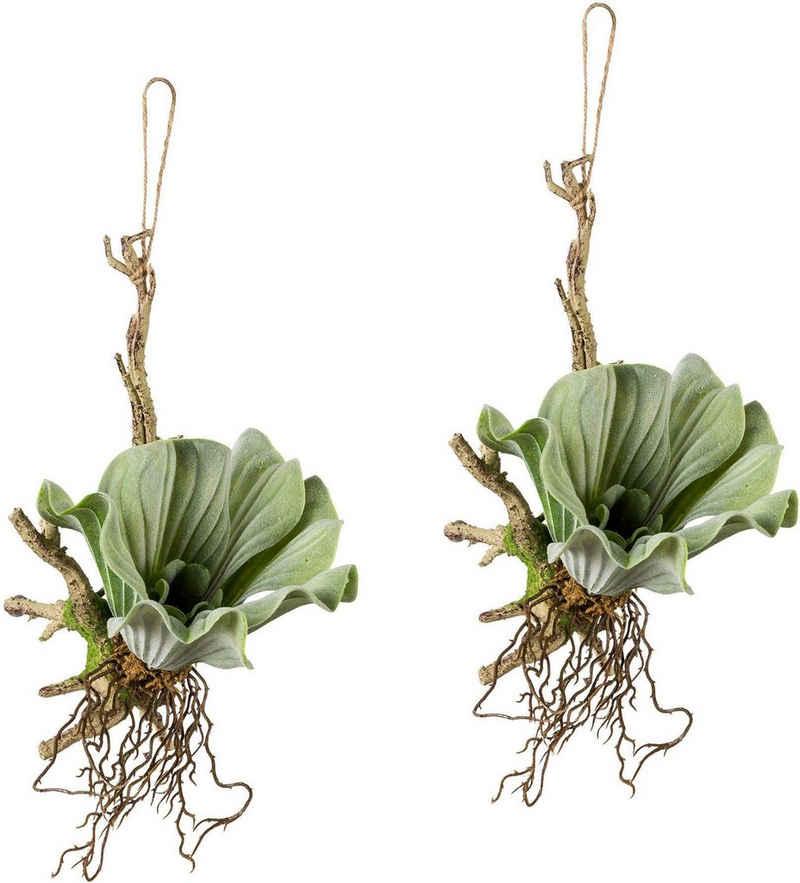 Kunstranke, Creativ green, Höhe 28 cm, 2er Set
