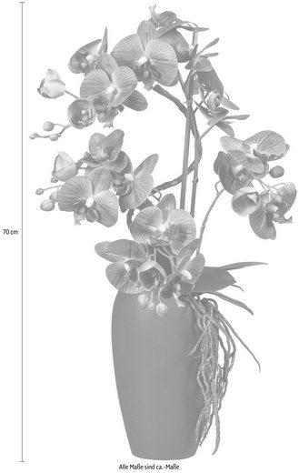 Kunstorchidee  Creativ green  höhe 70 Zentimeter  Höhe 70 cm  Soft Touch