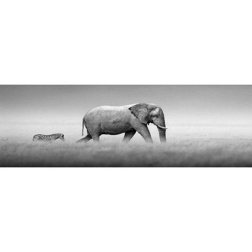 HTI-Living Glasbild »Elefanten«