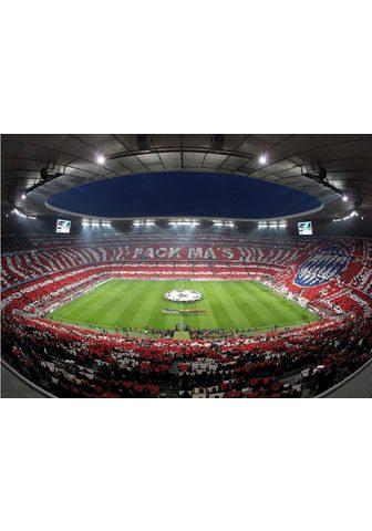 Fototapetas »Bayern München Stadion Ch...