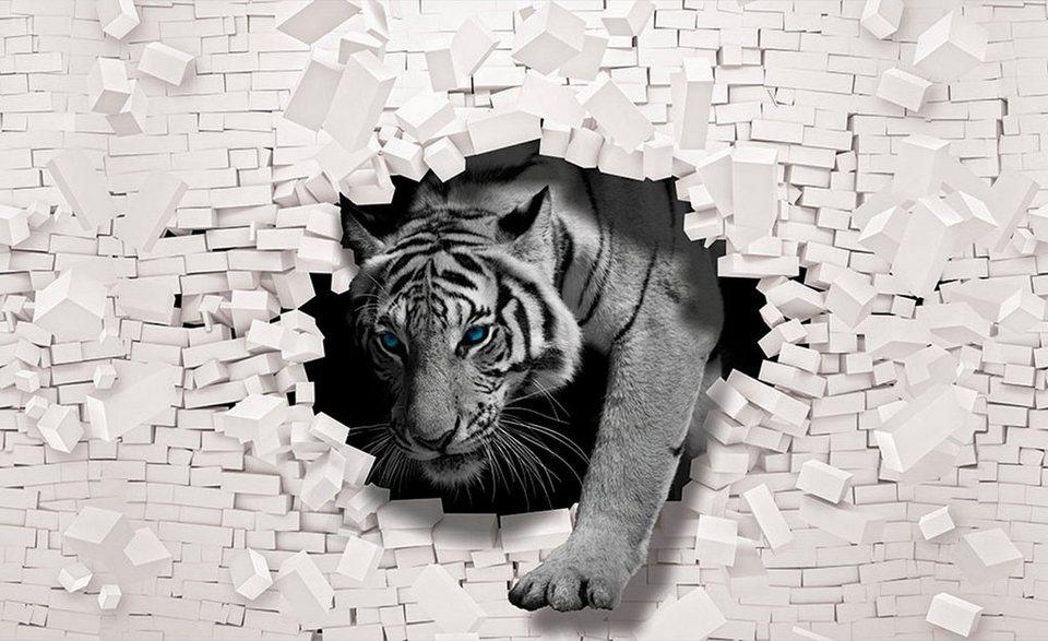 Consalnet Vliestapete 3d Tiger Verschiedene Motivgrößen Online