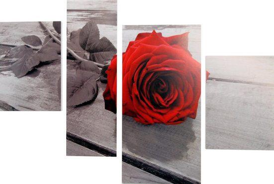Bild »RUMIN / Rose on the floor«