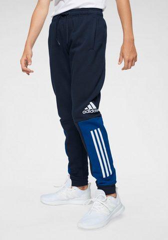 ADIDAS PERFORMANCE Sportinės kelnės »YOUNG BOY SID kelnės...