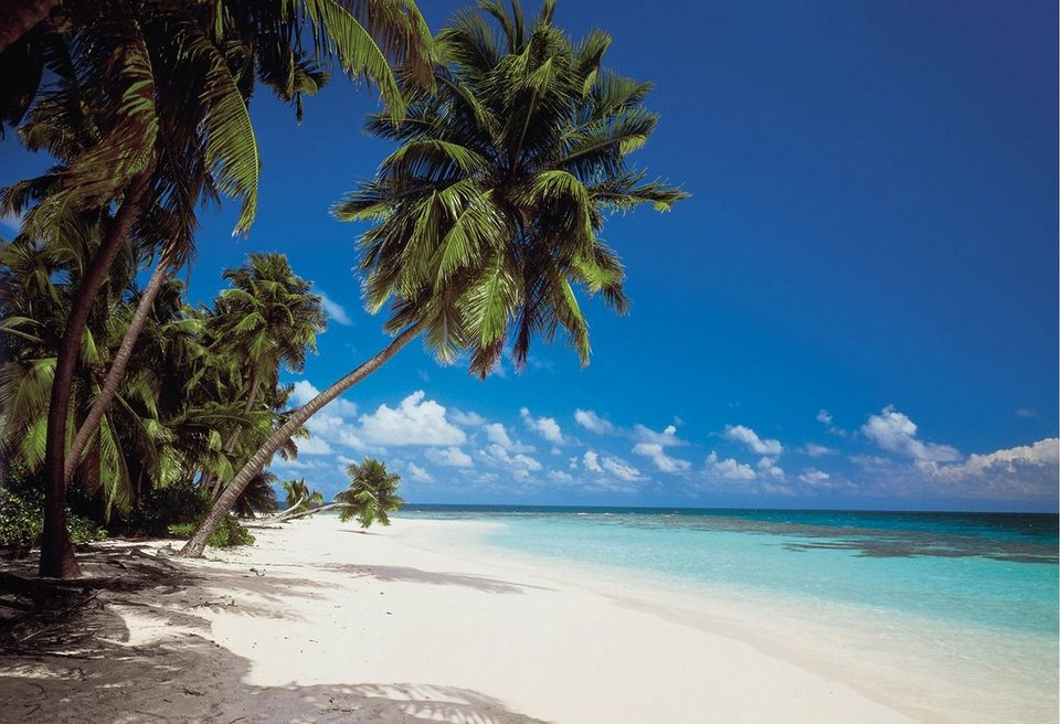 "Fototapete, Komar, ""Malediven"", 388/270 cm in bunt"