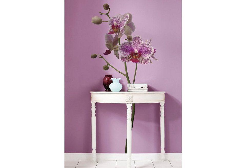 """Wandsticker, Komar, """"Orchidee"""", 70/100 cm in lila"""