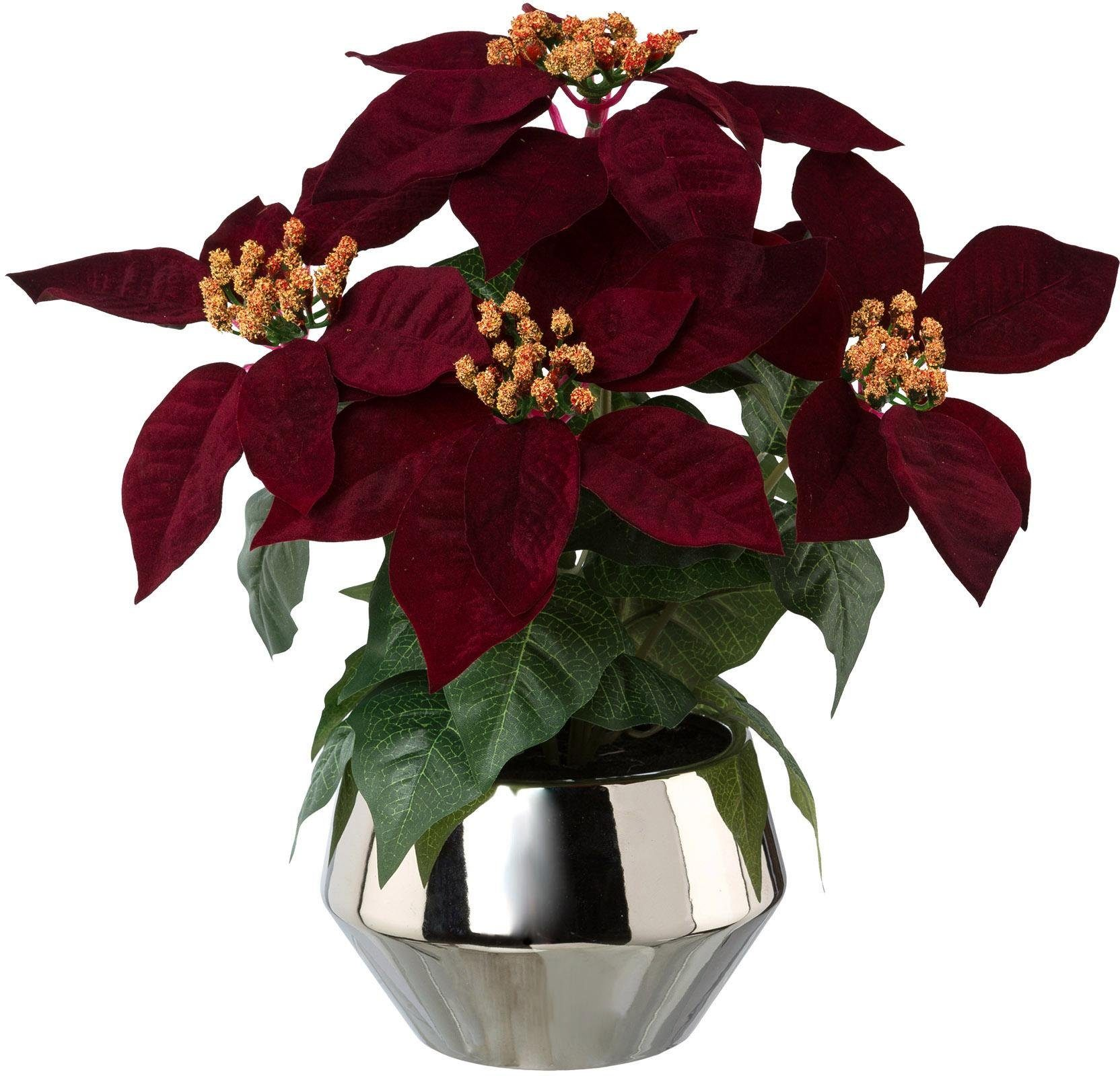 Künstlicher Weihnachtsstern Christstern Poinsettie Kunstblume Dekopflanze Weiß