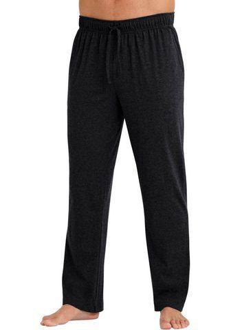 Wäschepur брюки длинa (2 единиц