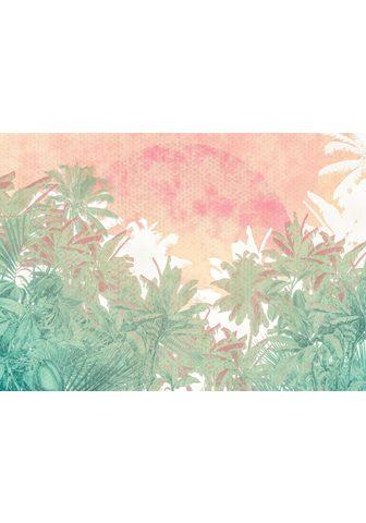 KOMAR Fototapetas »Palmiers«