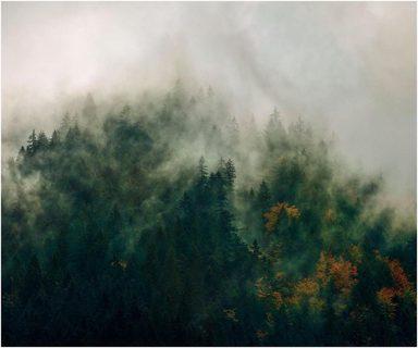 Komar Fototapete »Tales of the Carpathians«, 300/200 cm