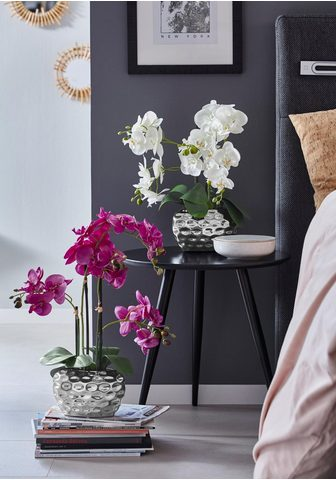 Dirbtinis augalas »Orchidee«