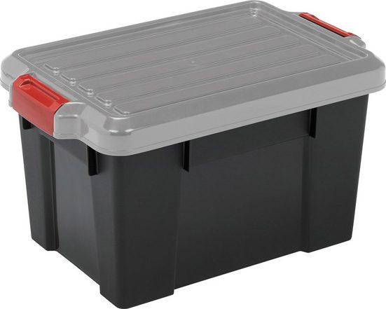 IRIS OHYAMA Aufbewahrungsbox »SK700« (Set, 3 Stück)