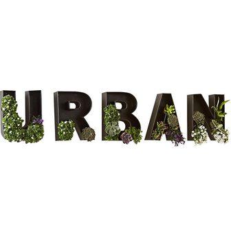 SCHNEIDER Paveikslas »Schriftzug Urban Schwarz«