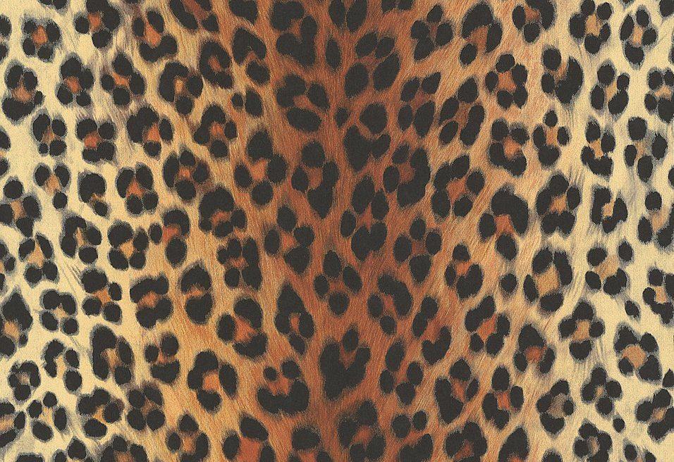 Sonstiges, Livingwalls, »Mustertapete in Leopardenfell-Optik«
