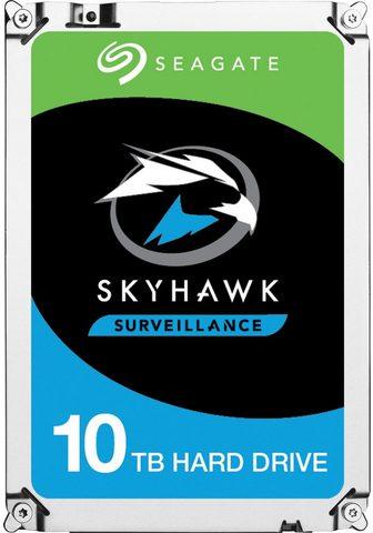 SEAGATE »SkyHawk AI« HDD-Festplatte 35 '' (SAT...