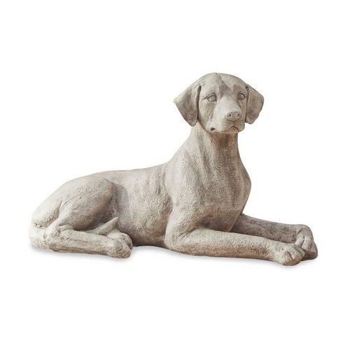 Loberon Hund »Socrate«