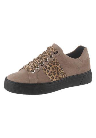 Ботинки со шнуровкой с Leo-Optik