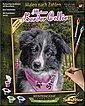 Schipper Malen nach Zahlen »Meisterklasse Klassiker - Border Collie Puppy«, Made in Germany, Bild 5