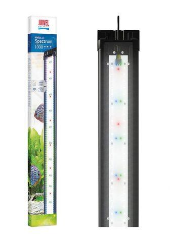 JUWEL AQUARIEN Akvariumas LED apšvietimas »HeliaLux S...