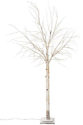 LED Baum »Crema«, 132-flammig, LED-Birke, Höhe 200 cm