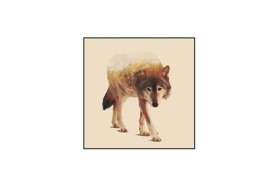 KUNSTLOFT Acrylglasbild »Einsamer Wolf«, gerahmtes Wandbild in Hochglanz
