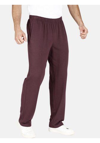 JAN VANDERSTORM Sportinio stiliaus kelnės »WENNER«