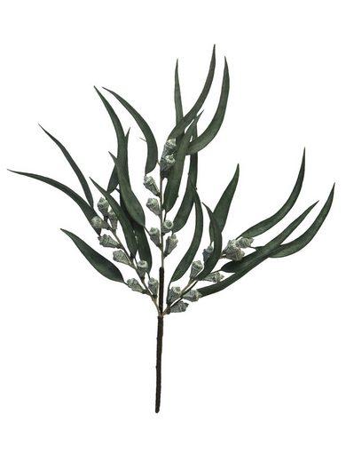"""Dekozweig """"Eucalyptus-Zweig Brisbane"""" 46 cm"""