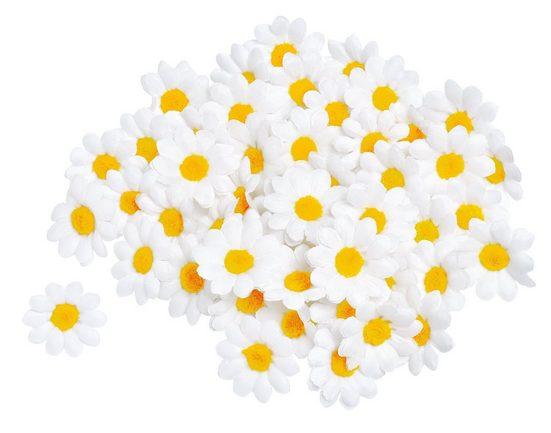 VBS 50 Margeritenblüten