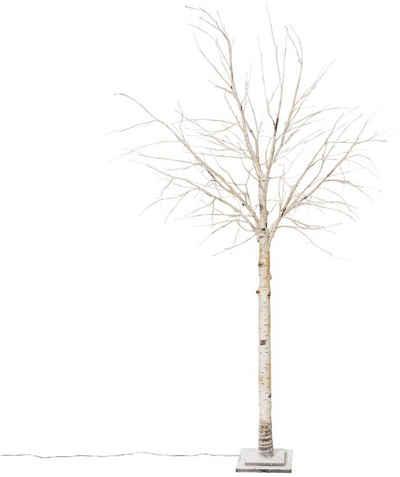 LED Baum »Crema«, LED-Birke, Höhe 200 cm