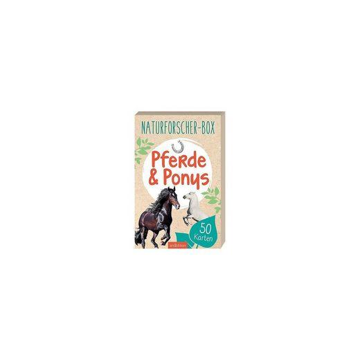 arsEdition Verlag Naturforscher-Box: Pferde & Ponys, 50 Karten