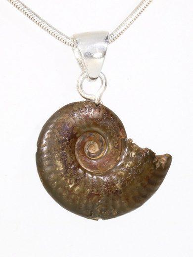 Adelia´s Kettenanhänger »Ammonit Schmuck Stein Anhänger - 925 Silber«
