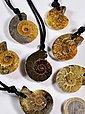 Adelia´s Kette ohne Anhänger »Ammonit Stein Halskette - 42 cm«, Bild 1