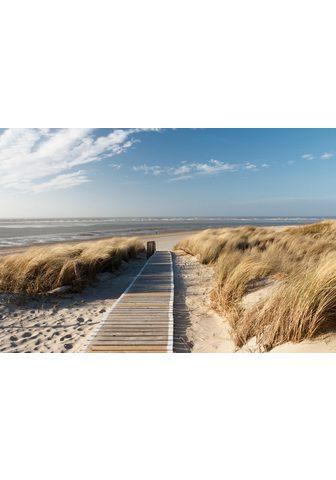 PAPERMOON fototapetas »Dunes in Langeo...
