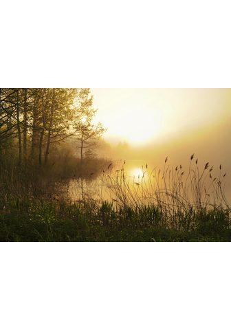 PAPERMOON fototapetas »Stunning Foggy ...