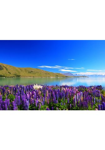 PAPERMOON fototapetas »Lupines Lake Te...