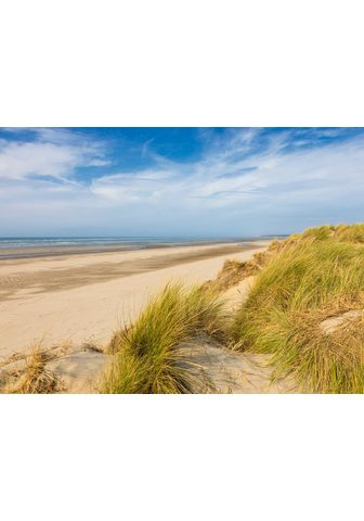 PAPERMOON фотообои »Dunes Touque...