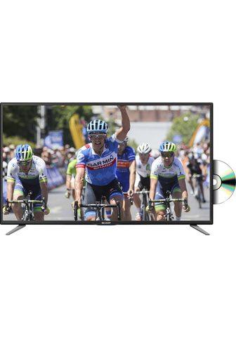 SHARP LC-24DHG6132E LED-Fernseher (60 cm / (...