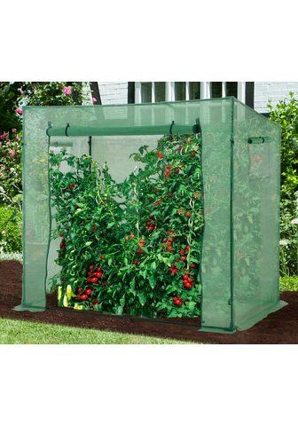 KONIFERA Pomidorų auginimo šiltnaminis BxTxH: 2...