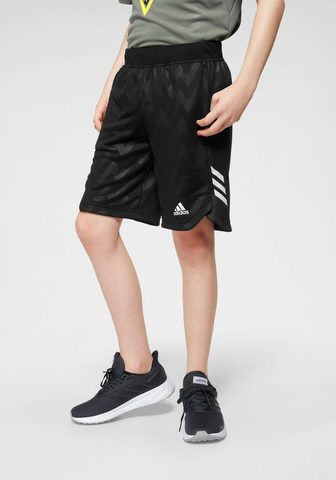 ADIDAS PERFORMANCE Шорты спортивные »JOUTH BOY TRAI...