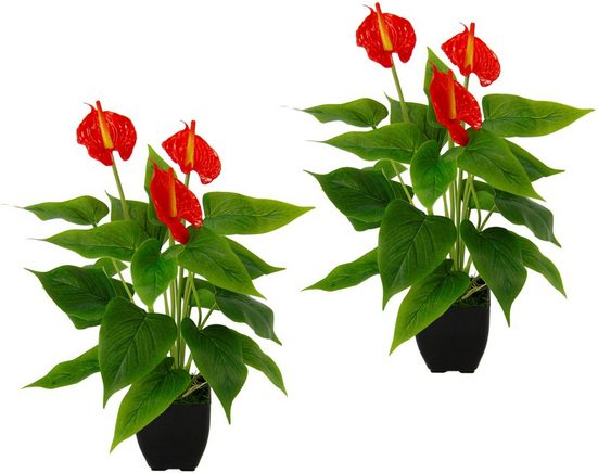 Kunstpflanze »Anthurienpflanze« Anthurie, I.GE.A., Höhe 40 cm