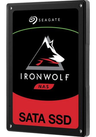 SEAGATE »IronWolf 110« SSD 25 ''