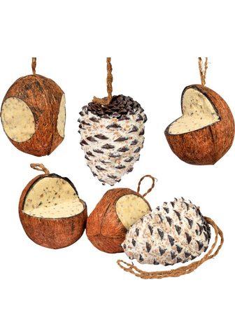 DOBAR Paukščių lesalas 4 Kokosnüsse ir 2 Zap...