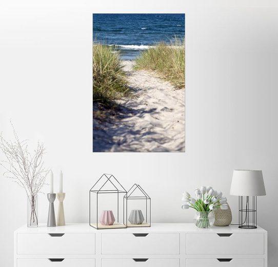 Posterlounge Wandbild, Weisse Düne am Strand der Insel Rügen