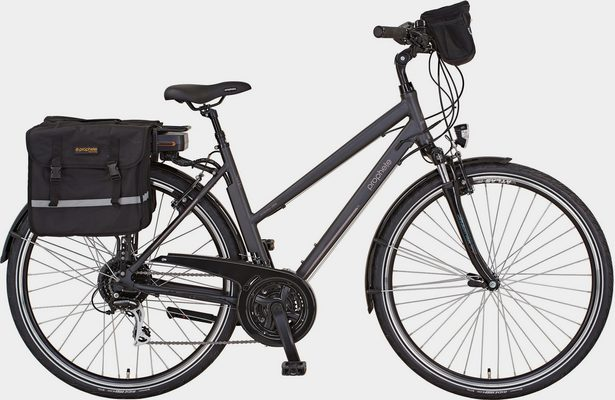E-Bike »Entdecker e900«, 24 Gang Shimano Acera Schaltwerk, Kettenschaltung, Heckmotor 250 W