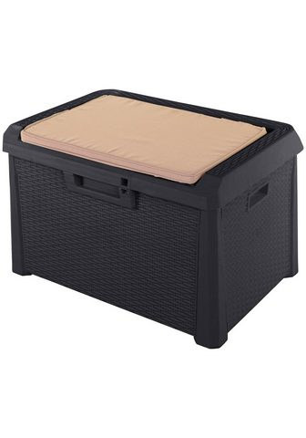 ONDIS24 Auflagenbox »Santo Kompakt« 120 Liter ...
