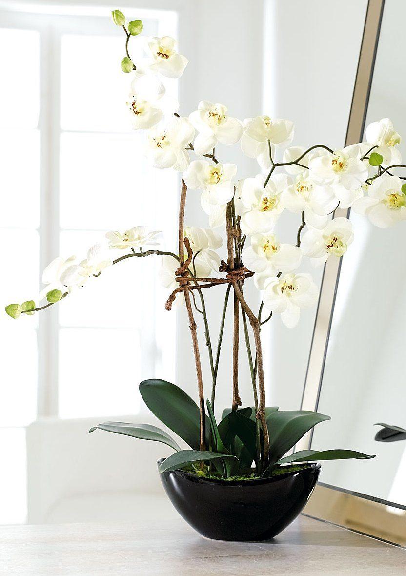 Home affaire Kunstblume »weiße Orchidee«