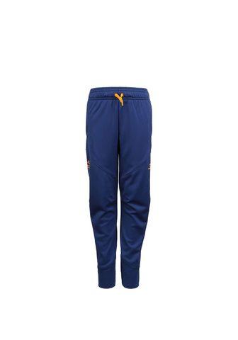 ® брюки спортивные »Sc30 War...