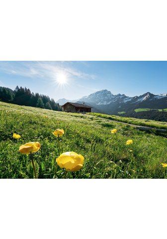KOMAR Фотообои »Alpenglück«...