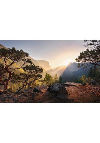 KOMAR Фотообои »Yosemites Secret«...