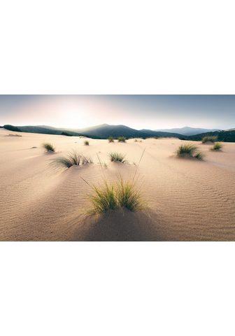 KOMAR Fototapetas »Vivid Dunes« Bahnbreite: ...